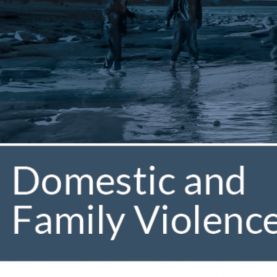 Domestic & Family Violence Fact Sheet